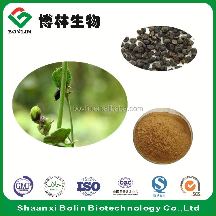 GMP Manufacturer Supply Malaytea Scurfpea Fruit P.E. Psoralen Powder