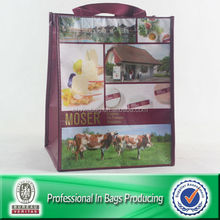 80% Recycled RPET Fabric Custom Photo Bag
