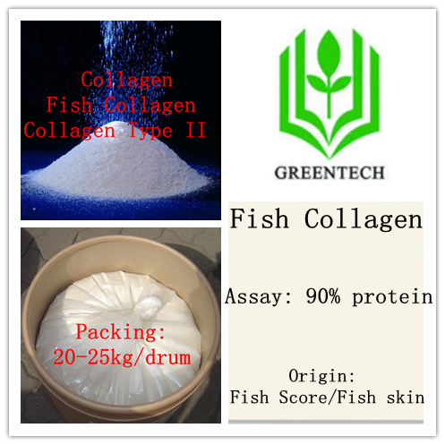 Hot Sell Beauty products Fish Collagen 90%( Collagen Type I)