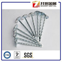 galvanzied roofing nails linyi factory /cheap price roofing nails