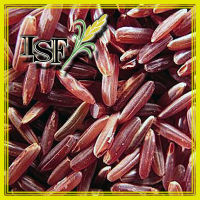 HIGH QUALITY Natural Whole Grain Nutritional Thai Red Rice THAILAND EXPORT SALE LONG GRAIN