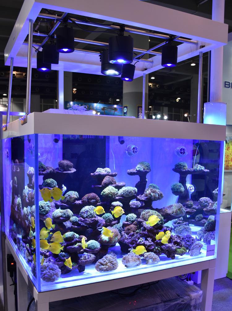 Asml-03 - As Satellite Series Led Marine Aquarium Led Lighting Reef ...