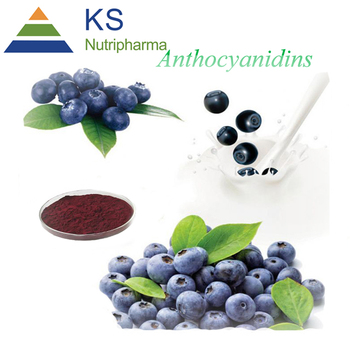 100% Natural plant extract anthocyanin/anthocyanidins 25% UV from Chinese Bilberry