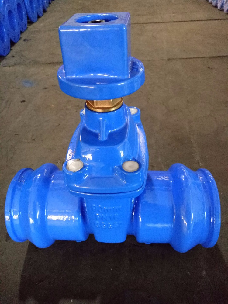 Double socket gate valve 90mm with stem cap