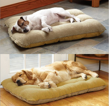 2017 New Arrival Cotton Plush Dog Large Bed