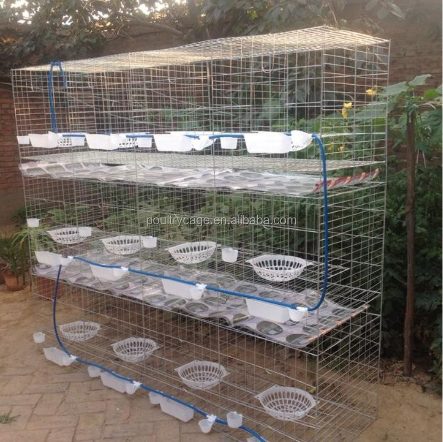 Hot Sale Prices Of Pigeon Coops And Folding Metal Large Pigeon Cage On Alibaba For Sale
