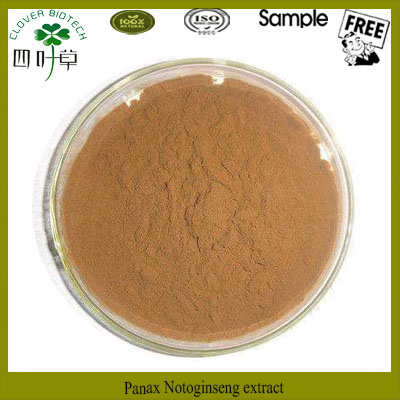 Hot selling panax ginseng extract root powder