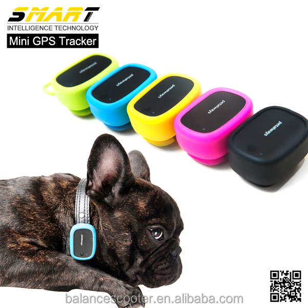 Latest GPS + WIFI + LBS gps tracking devices pet activity monitor G-sensor pet gps tracker