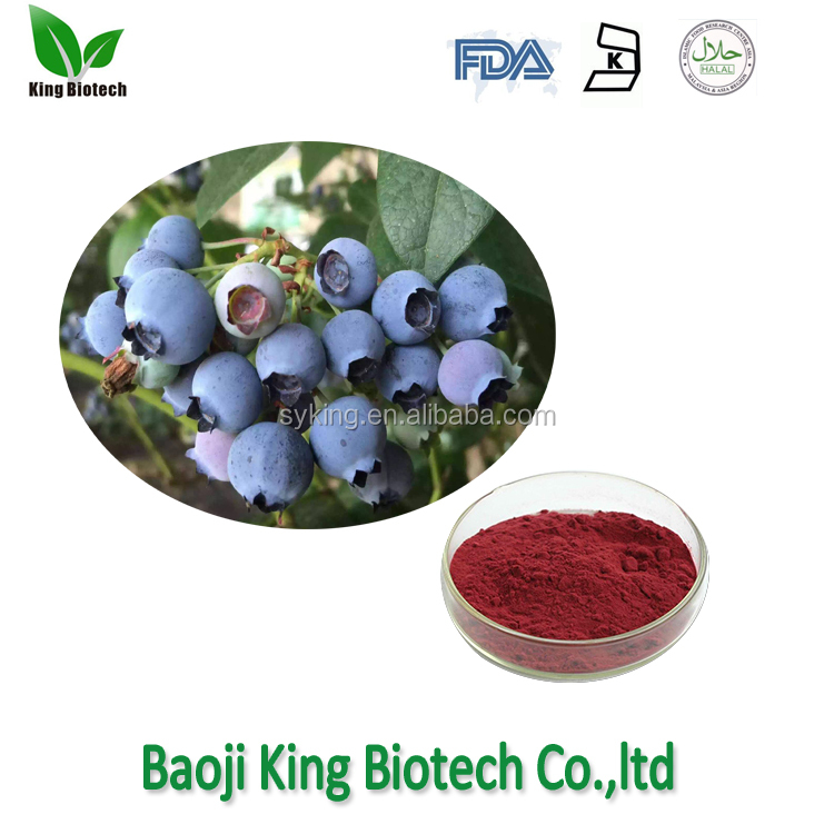 hot selling fresh bilberry extract/ bilberry extract powder from cGMP manufacturer