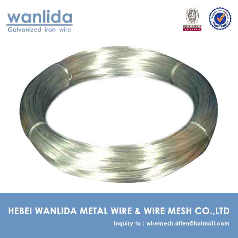 12 Gauge Electro - galvanized Wire Coil ( China Supplier )