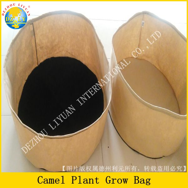 Eco-Friendly Fabric Plant Grow Bags for Plants/ Vegetables/Flowers/ Tomato & Fruit Trees