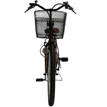 26 Inch Eagle Hybrid Electric Bicycle