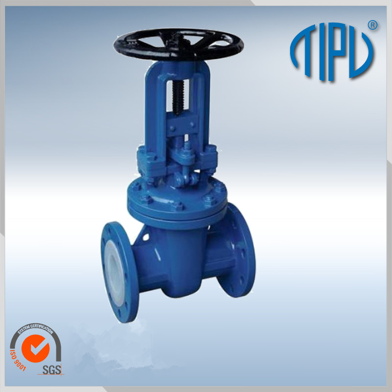 Professional Cast Steel Flanged RF RTJ Gate Valve