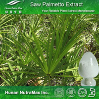Pure 25% Fatty Acid Saw Palmetto Extract Capsules, Saw Palmetto Capsules