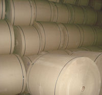 Corrugated Medium Paper