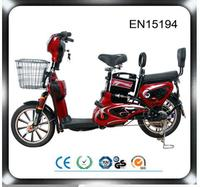 2 Person Pedal Assist Electric Motorbike