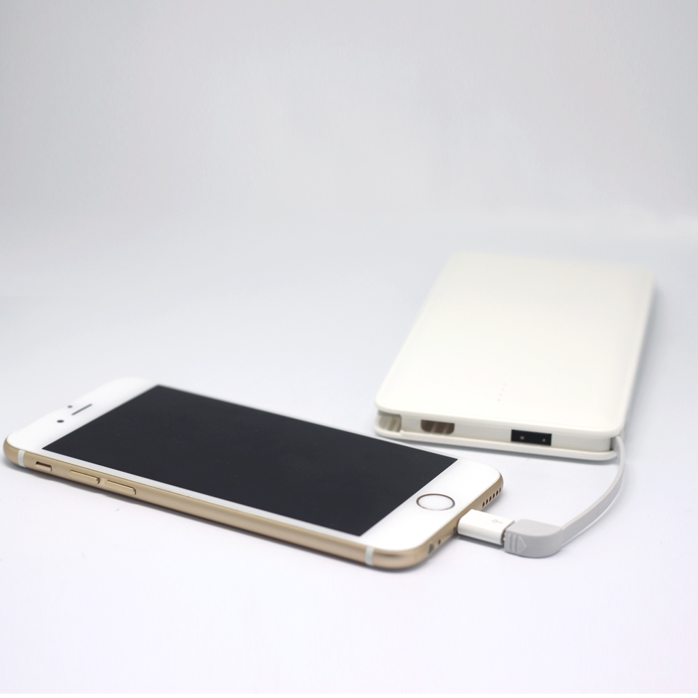 Real capacity 10000mah original design leather case 2a input card power bank