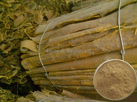 Export high quality with nice price export amur cork tree bark extract powder