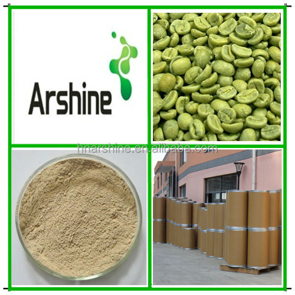 Green Coffee Extract,Green Coffee Bean Extract,Chlorogenic acids