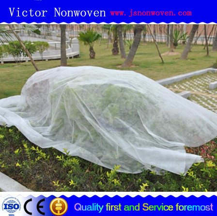 china manufacture pp spunbonded nonwoven for plant cover