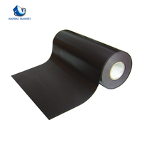 Motor Coated Magnetic Roll Flexible Magnets