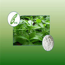 Stevia Extract Rebaudioside A Stevioside Stevia Powder For Food Additives stevia rebaudiana extract