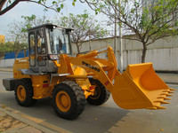 2ton, 1.1cbm mini wheel loader TZL920