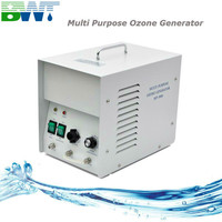 3G CE approved portable ozone fruit and vegetable washer