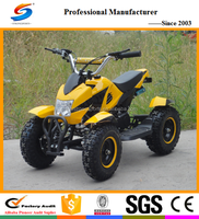 Hot sell Mini Gas ATV and Gasoline Quad, New Design 49cc Mini ATV and 49cc quad ATV-1