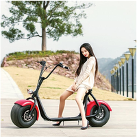 Big Size 2 Wheel Self Balance 800W Citycoco Balancing Electric Scooter,sport electric motorcycle citycoco with seat