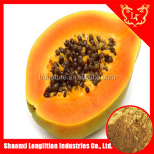 Natural Plant Enzyme Papain/Papaya Extract powder with professional manufacturer