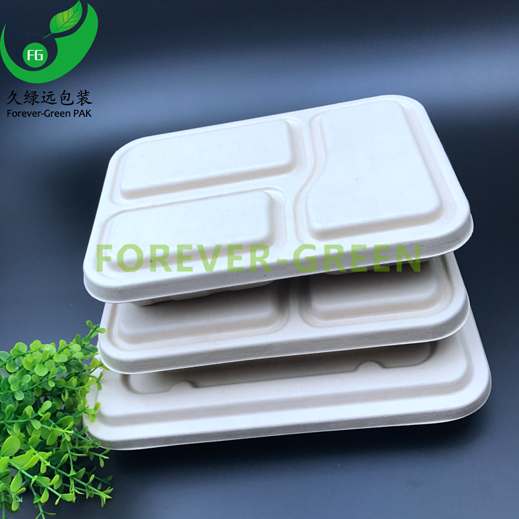 sugarcane pulp container takeaway recycled paper pulp container /insulated hot pulp food containers