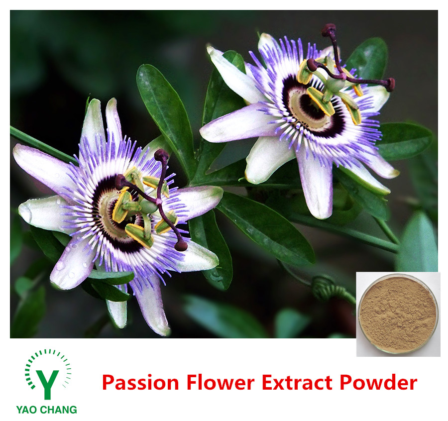 Organic Natural Plant Passion Flower Extract Powder