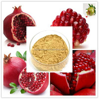 pomegranate seed extract powder/pomegranate husk extract powder/natural pomegranate peel extract powder