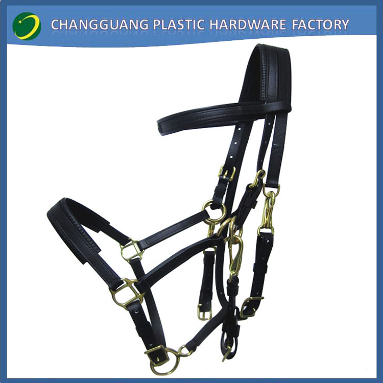 horse racing equipment endurance bridle rein and breastplate