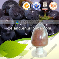 Pure Polyphenols70%-95% (Grape Seed Extract) CAS:84929-27-1