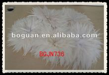 "5-6"" bulk white color grizzly rooster feathers"