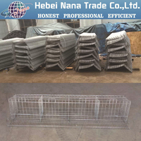 China supply best sale chicken egg layer cages in south africa