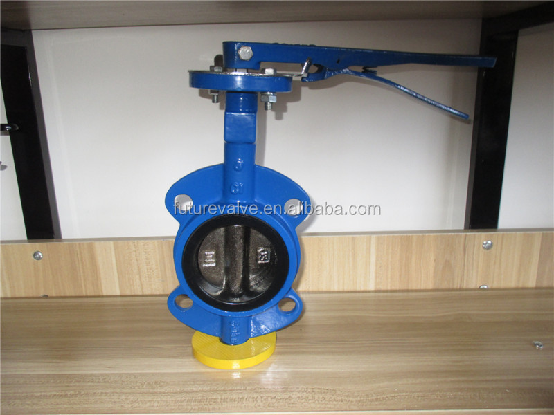 Cast Iron Butterfly Valve /Gate Valve/ Check Valve Manufacturer From China