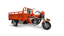 China Gold Supplier Carrier Tricycle Latest Products in Market