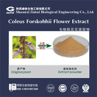 100% natural food field Coleus Forskohlii Extract
