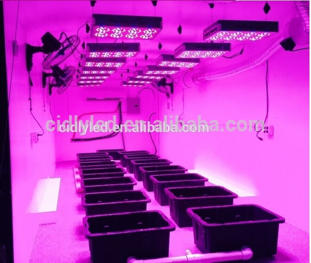 360w Perfect for small Grow Box Grow Tent DIY Hydroponics Bonsai vertical Garden diy led grow light