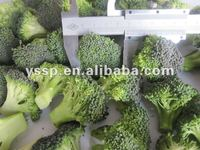 best frozen vegetable of broccoli