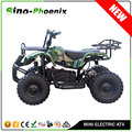 36V Voltage and 800-1000W Power 500W Electric ATV (PE9056)