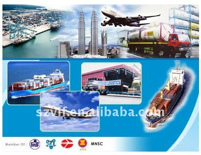 ocean shipping service price to Male Maldives from china