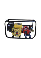 Portable Whole Set Gasoline Engine Power Sprayer With Great Power For Agricutural Irrigation