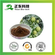 Powder Form and Liquid-Solid Artichoke Extract 5% Cynarin Powder for Lowering Cholesterol