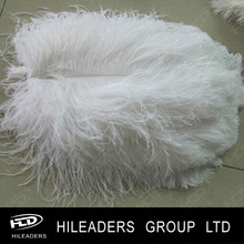 Event Decoration 16-18inch White Ostrich Plumes Feather