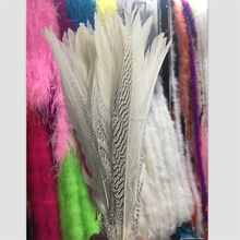PM-506 16- 26 inch beautiful natural silver pheasant chicken tail feathers