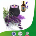 Natural & pure lavender oil with superior quality, factory supply lavender oil